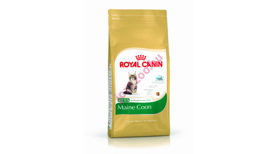 royal canin maine coon kitten 10kg royal canin jozyzoo llateledel. Black Bedroom Furniture Sets. Home Design Ideas